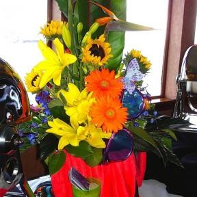 Daisies, Birds, Sunflowers
